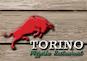 Torino Pizzeria Restaurant logo