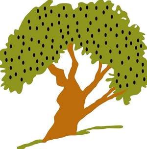 Olive Tree Bistro