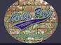 Chubby Rays logo