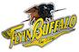Flyin Buffalo logo