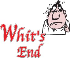 Whit's End Inc